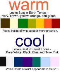 what color goes with my skin tone 1000 images about colours for with a cool skin