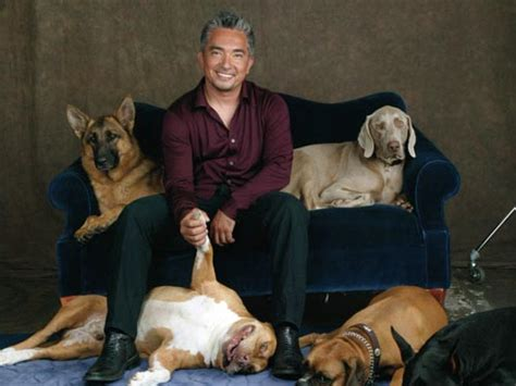cesar the whisperer the whisperer images cesar millan wallpaper and background photos 25204425