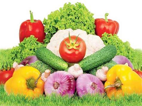 8 vegetables in summer vegetables top 8 indian vegetables for summer