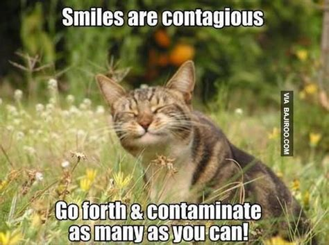 Smiling Cat Meme - 35 funny smile meme images and photos that will make you laugh