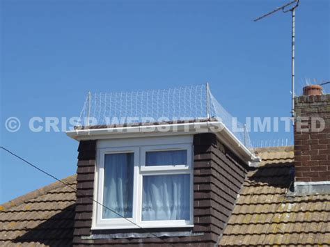 Roof Dormer Kits 75mm seagull netting dormer roof kits enviroguard
