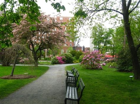 1000 images about halifax gardens on