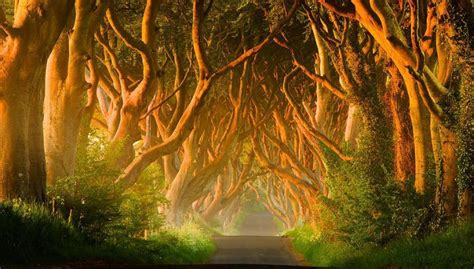 glitter wallpaper northern ireland 10 best real places to visit that look like fantasy lands