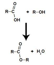 ester quimica o que 233 233 ster brasil escola