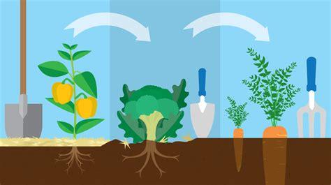 year crop rotation plan fixcom
