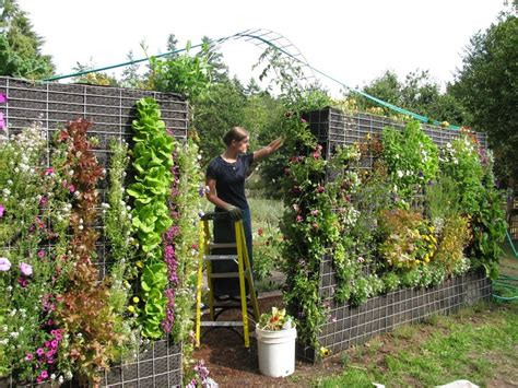 how to grow a vertical garden the vertical garden home garden decor