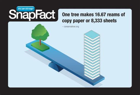 How Many Trees Are Used To Make Paper Each Year - snapfact friday how much paper does one tree produce