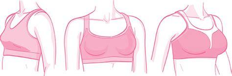 pick   sports bra   size chatelaine