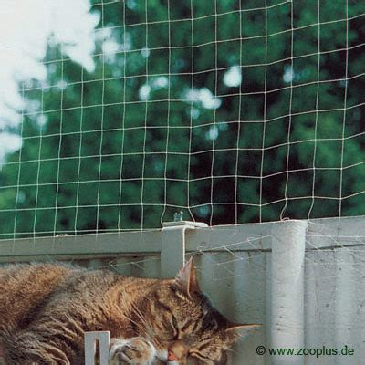 Cat fencing, cat safe fencing, cat friendly fencing