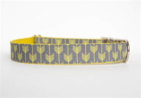 yellow collars c collar grey yellow pecan pie puppies