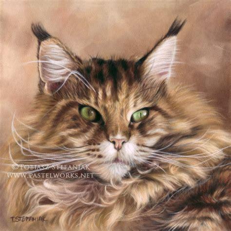 maine coon painting pet portraits animal art