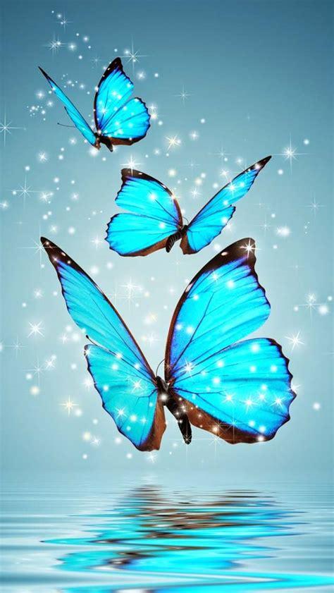 hd mobile aqua butterfly hd wallpaper