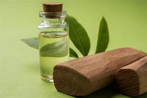 Minyak Cendana Asli 12 manfaat minyak cendana sandalwood untuk perawatan tubuh