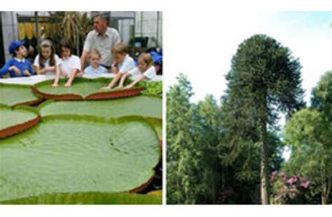 durham botanic garden durham botanic gardens places to visit