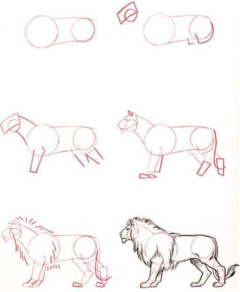 sketchbook tutor 25 best ideas about draw animals on tutorial