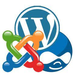 best content management system open source what s the best open source cms lform nj web