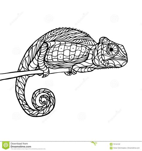 coloring pages for adults chameleon zen tangle magic chameleon stock vector image of page