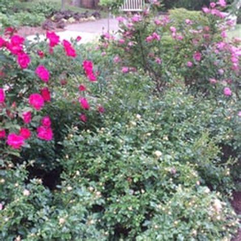 botanischer garten der universität würzburg öffnungszeiten edith j carrier arboretum at