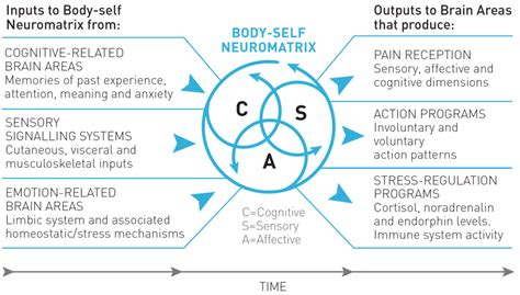 pattern theory of self understanding pain dermoneuromodulating
