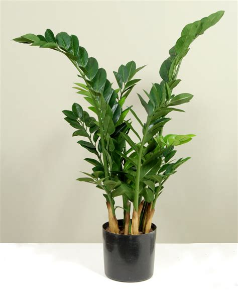 Artificial Planters by Artificial Plants Plantforce Office Plants