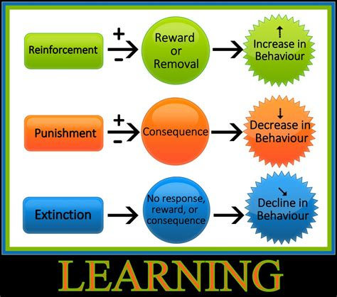 positive reinforcement the way positive reinforcement is carrie by b f skinner like success