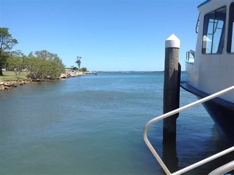 boat tours yamba clarence river ferries yamba all you need to know