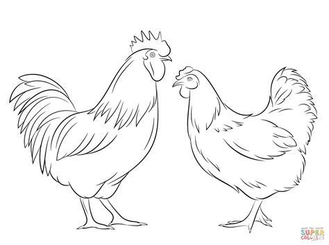 printable hen images rooster and hen coloring page free printable coloring pages