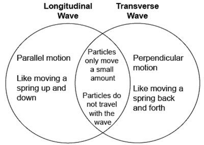 venn diagram of transverse and longitudinal waves venn diagrams are used for comparing and contrasting