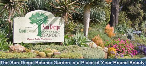 Flower Garden San Diego Encinitas S San Diego Botanic Gardens Is World Renowned