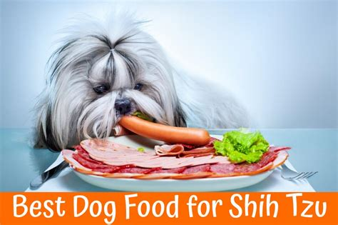best food for shih tzu 2017 buyer s guide and reviews of the best food for shih tzu us bones