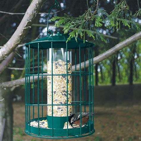 squirrel proof bird feeder tractor supply