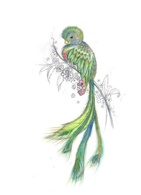 imagenes de tatuajes de quetzal rodmi cordero buscar con google dibujos y pinturas