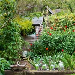 vegetable garden with shed country cottage garden tour