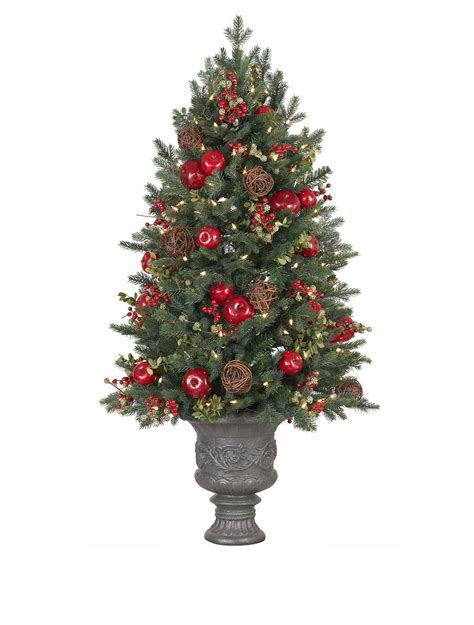 norway spruce potted christmas tree balsam hill australia