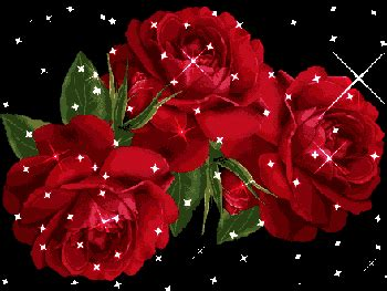 7th february happy rose day gif animated images wallpaper