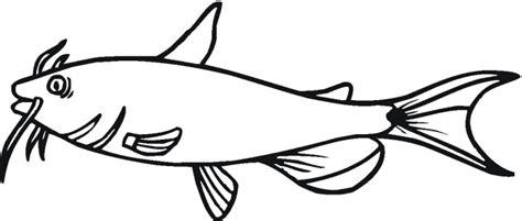 catfish drawing clipart