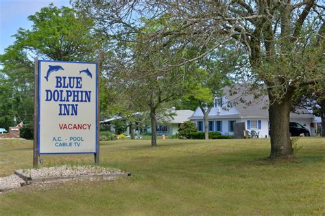 blue dolphin inn cape cod blue dolphin inn in cape cod hotel rates reviews on orbitz