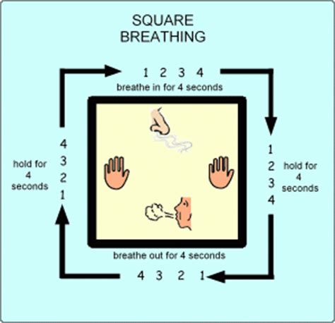 Cheryl Outer Navy how to do the 4 part breath square breathing my bridges
