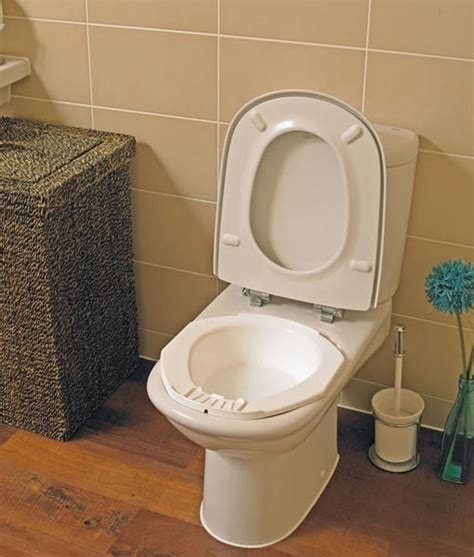 toilet bowl with bidet bidet bowl in australia ilsau au