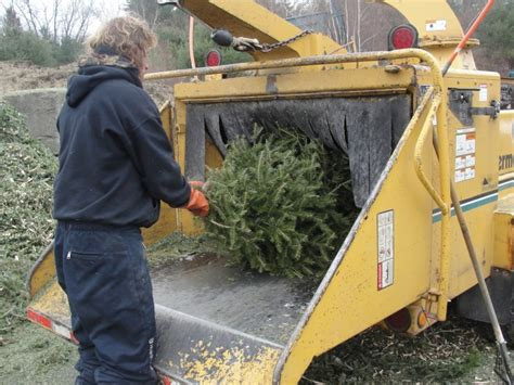 waste management christmas trees free tree recycling in kirkland by waste management kirkland wa patch