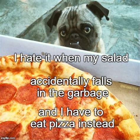 pug pizza pizza pug imgflip