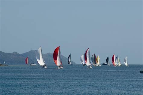 sailing boat race regatta sailing boat race 183 free photo on pixabay