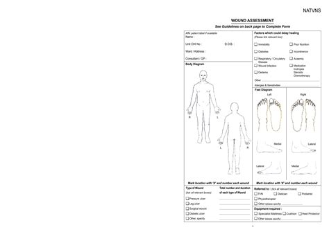 wound chart template 7 best images of human anatomy pdf free charts wound