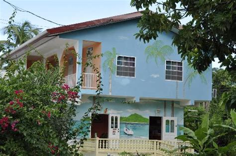 houses to buy in tobago fish tobago guesthouse updated 2017 prices guest house reviews buccoo tripadvisor