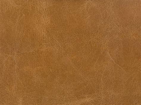 kravet upholstery kravet couture l haute camel decor upholstery fabric