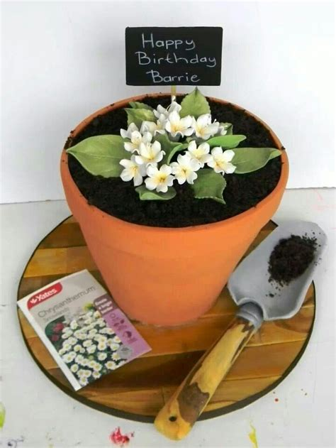 Gardening Cake 1000 Images About Edible Flower Pots On Pinterest Skateboard Cake The Flowers And Squares
