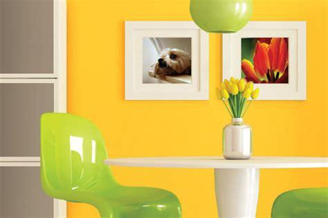 colourland paints colour inspiration new
