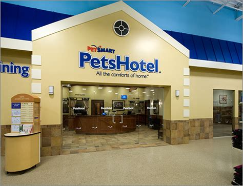 kennels at petsmart image gallery petsmart boarding