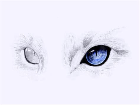 cat eye drawing cat eyes by onewayprophet on deviantart