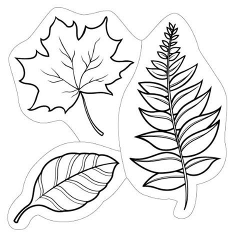 leaf pile coloring page pile of leaves coloring page coloring pages